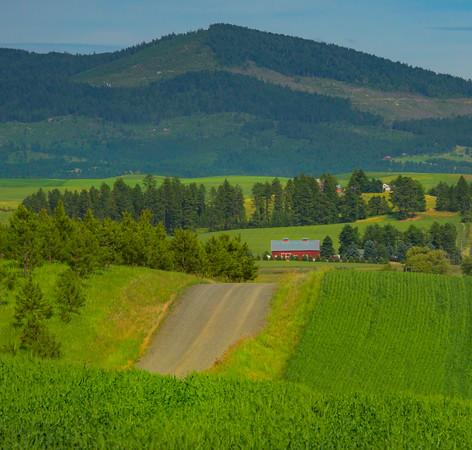 Borders Of Idaho And Moscow Hills - The Palouse, Western Idaho