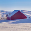 Palouse Stock Palouse Stock 30