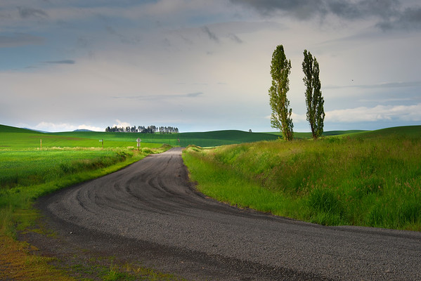 Strolling The Backroads Of The Palouse - The Palouse Region, Washington