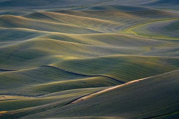 Waves Of Time - The Palouse Region, Washington