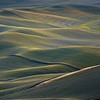 Waves Of Time - The Palouse Region, Washington