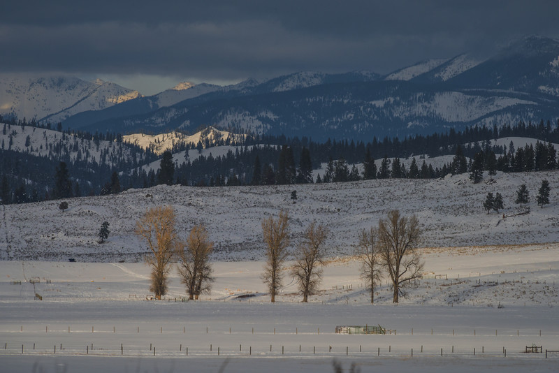 Paws Up Luxury Ranch - Greenough, Montana