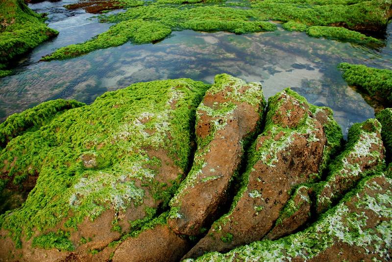 Hookipa Rockscape