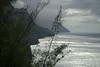 Kauai - The Napali Coast view from the trail