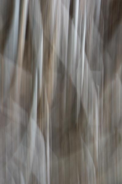 017_Maui_Photography_Aubrey_Hord-0327