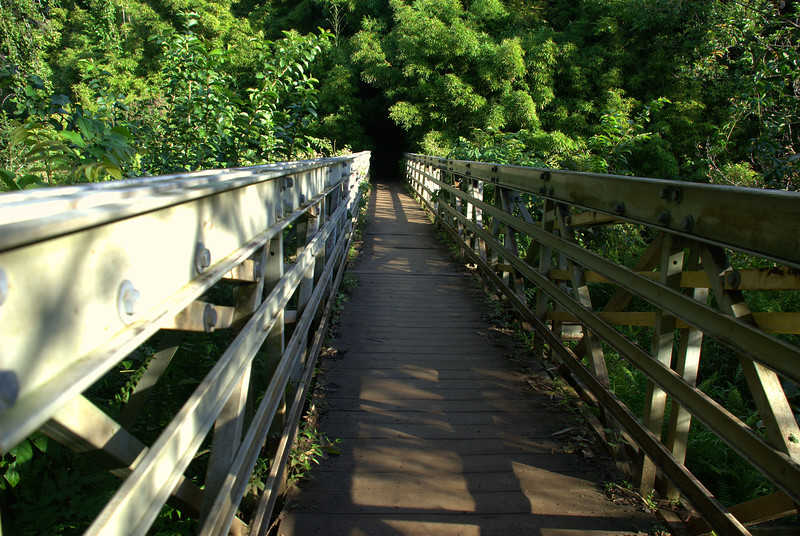 bridge into bamboo forest 2