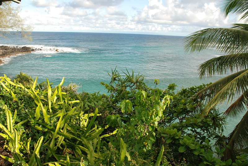 Hamoa view with greenery