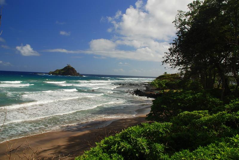 Alau island with coast
