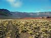 Haleakala NP trail from Paliku Cabin