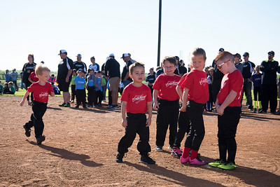 Crawford Little League Opening Ceremonies 2017