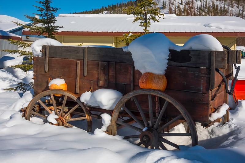 The Pumpkin Truck -Chena Hot Springs Resort, Fairbanks, Alaska