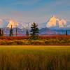 Layers Of Autumn And Winter - Denali National Park, Alaska