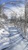 Frozen Morning Creeks Along Trail - Goldstream Valley, Fairbanks, Alaska
