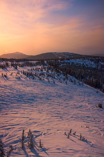 Last Light Across The Meadow -Fairbanks, Mt Aurora Skiland, Alaska