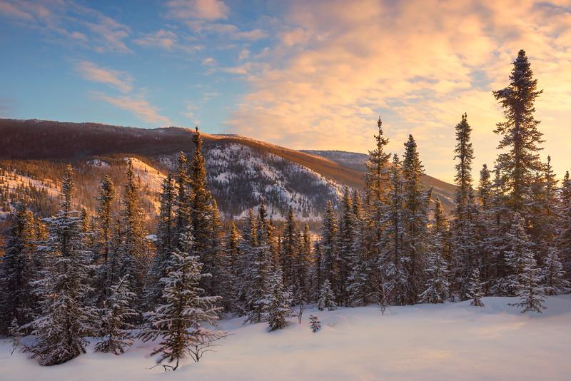 First Morning Light On The Hills -Chena Hot Springs Resort, Outside Fairbanks, Alaska