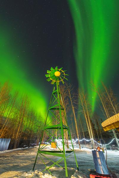 Not On The Farm -Chena Hot Springs Resort, Outside Fairbanks, Alaska