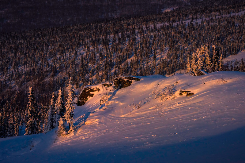 Spotlight On Cliff -Fairbanks, Mt Aurora Skiland, Alaska