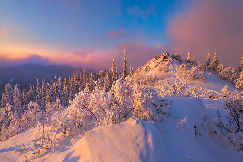 The Top Of The Snow Mound -Ester Dome, Fairbanks, Alaska