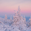 Statues Of Twilight Color -Ester Dome, Fairbanks, Alaska