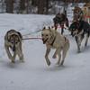 Determination -Chena Hot Springs Resort, Outside Fairbanks, Alaska