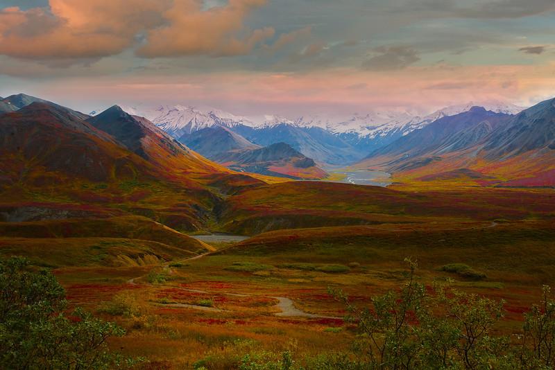 The Variety Of Colors Among Alaskan's Tundra - Denali National Park, Alaska