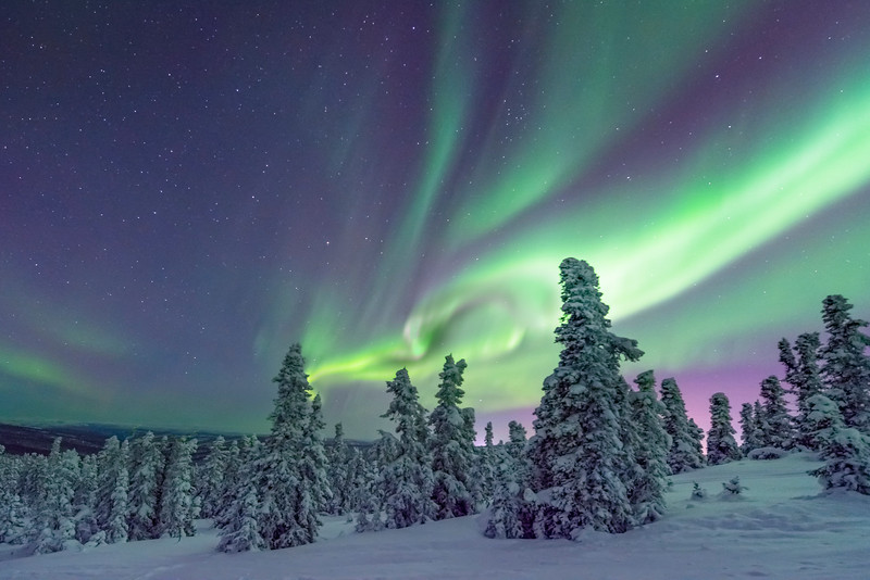 Rings Of Light -Fairbanks, Mt Aurora Skiland, Alaska