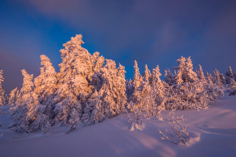 Snow White Against The Deep Blues -Ester Dome, Fairbanks, Alaska