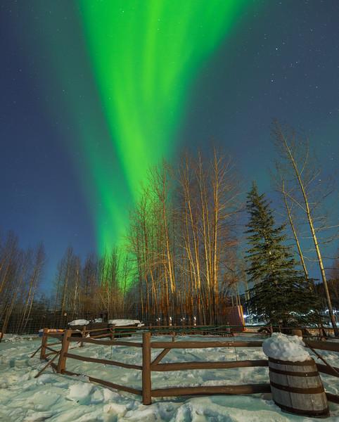 Beginning Of The Lights -Chena Hot Springs Resort, Outside Fairbanks, Alaska