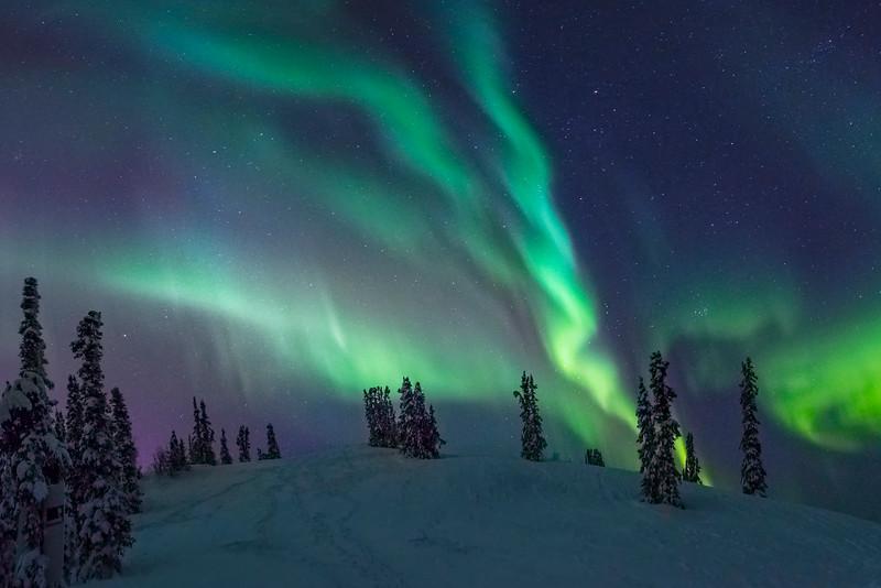 Circle Of Falling Light -Fairbanks, Mt Aurora Skiland, Alaska