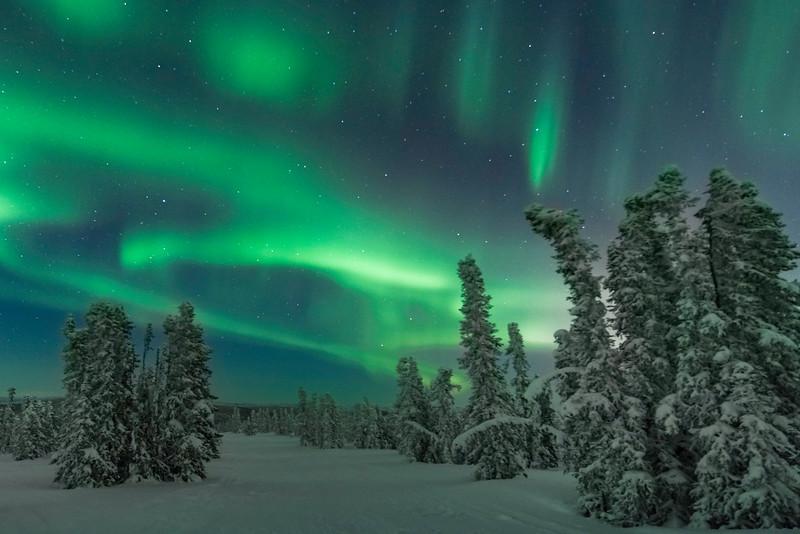The Road To The Lights -Fairbanks, Mt Aurora Skiland, Alaska