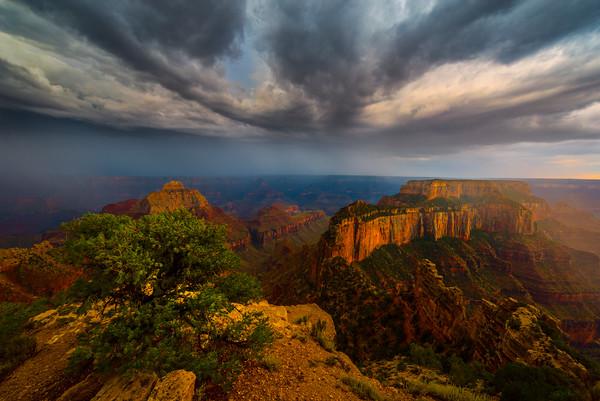 Wotan's Throne Thunder Clouds - North Rim, Grand Canyon National Park, AZ
