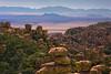 Fields Of Gold And Vastness - Chiricahua National Monument, Arizona