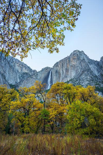 Dressed In Yellow Framing Upper Yosemite - Yosemite National Park, Eastern Sierras, California
