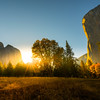 Sun Glow Shining Down On El Cap Meadow - Yosemite National Park, Eastern Sierras, California