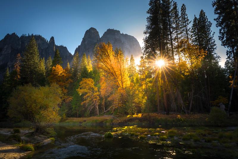 Sunburst Through Trees Below Cathedral Spires - Yosemite National Park, Eastern Sierras, California