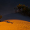 Spotlight On The Smaller Things In The Desert - Death Valley National Park, California