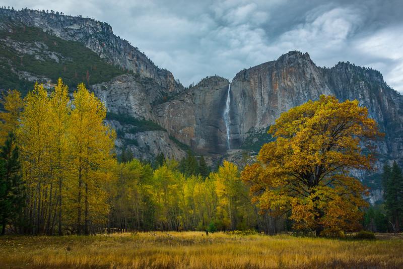 Upper Yosemite Falls From Swing Bridge Meadow - Yosemite National Park, Eastern Sierras, California