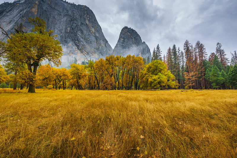 The Spires From El Captain Meadow - Yosemite National Park, Eastern Sierras, California
