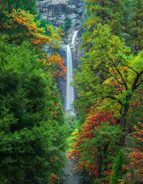 Lower Yosemite Falls Dressed In Colors - Yosemite National Park, Eastern Sierras, California