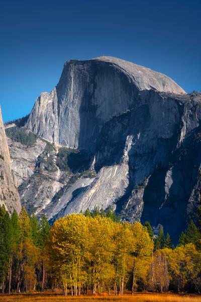 Half Dome From Ahwahnee Meadow - Yosemite National Park, California