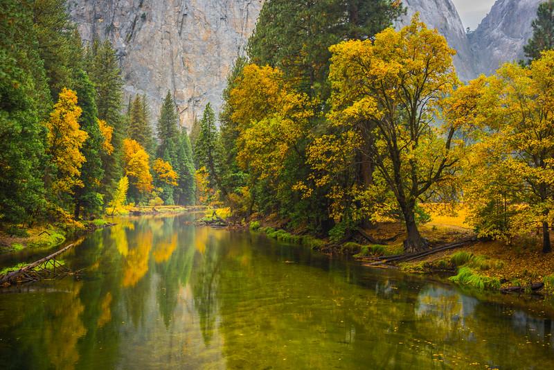 The Fall Foliage Along Merced From El Captain Bridge - Yosemite National Park, Eastern Sierras, California