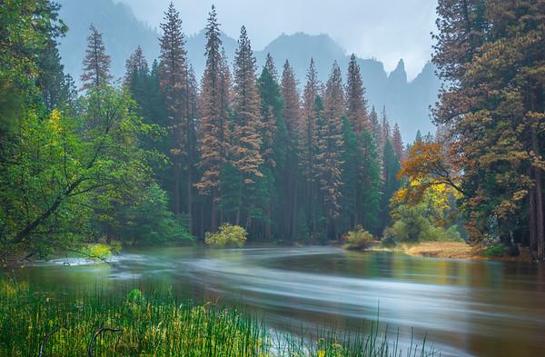 Head Downstream Along Merced River - Yosemite National Park, Eastern Sierras, California