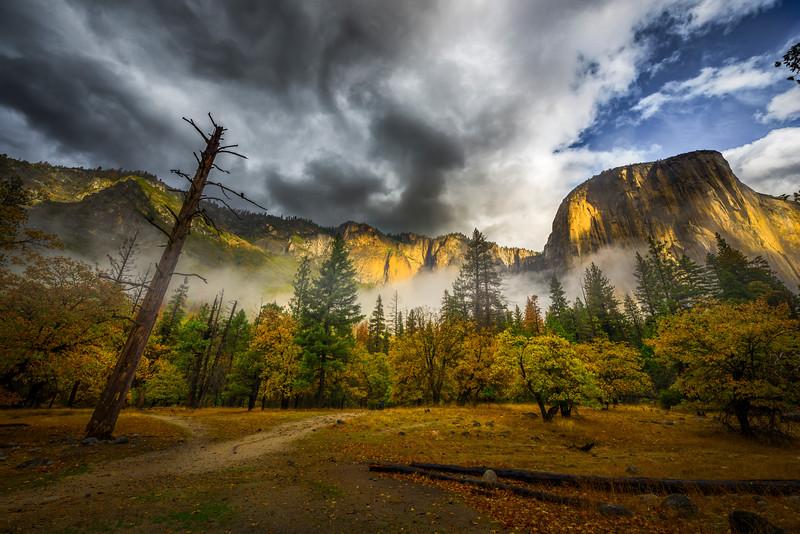 Thunderhead Clouds Above El Captain - Yosemite National Park, Eastern Sierras, California