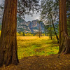 Framed Upper Yosemite Falls In Meadow - Yosemite National Park, Eastern Sierras, California
