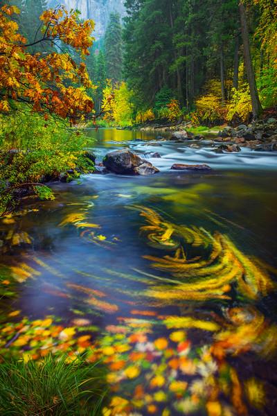 Eddy Pool Along The Merced River Near The Pohono Bridge - Yosemite National Park, Eastern Sierras, California