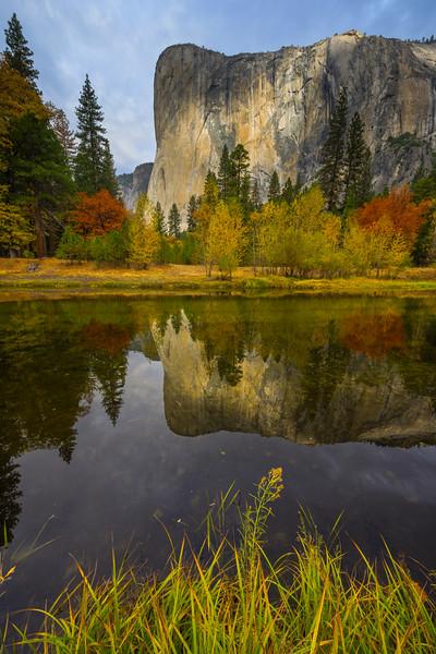 Vertical Reflection Of El Cap From Tahiti Beach - Yosemite National Park, Eastern Sierras, California