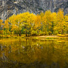 Reflections Along Merced River At Sentinel Beach - Yosemite National Park, Eastern Sierras, California
