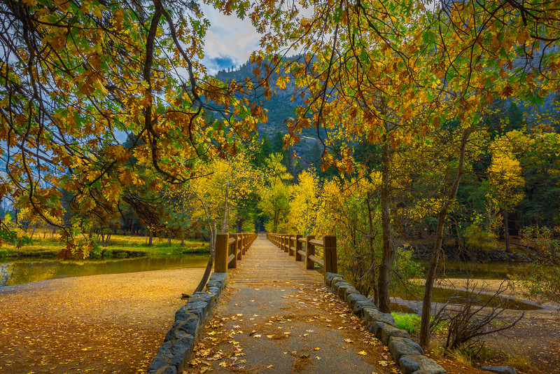 Walking Into Autumn At Swing Bridge - Yosemite National Park, Eastern Sierras, California