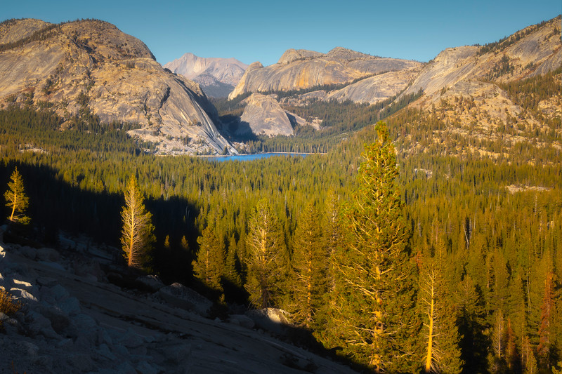 Tenaya Lake From Above In Upper Yosemite - Yosemite National Park, California