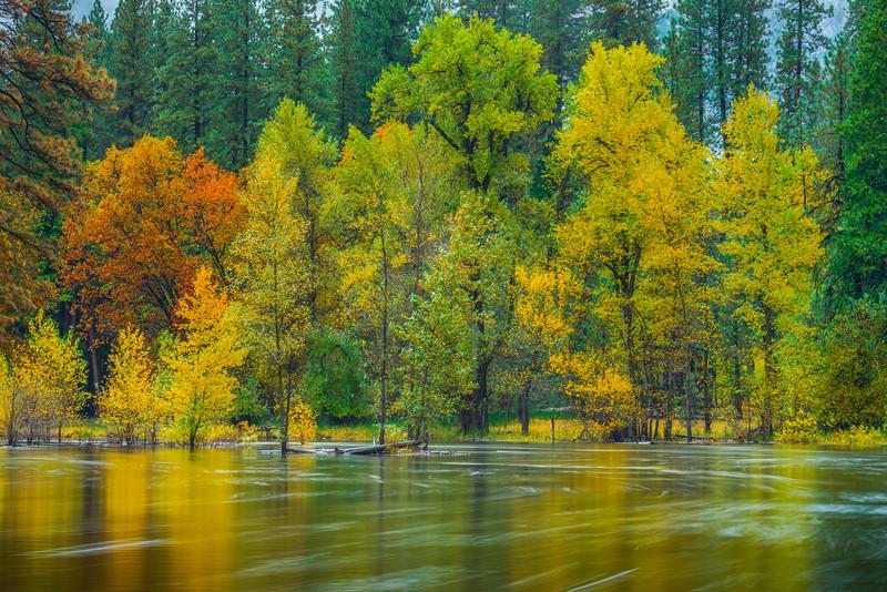Rainbow Of Colors Along Merced River - Yosemite National Park, Eastern Sierras, California